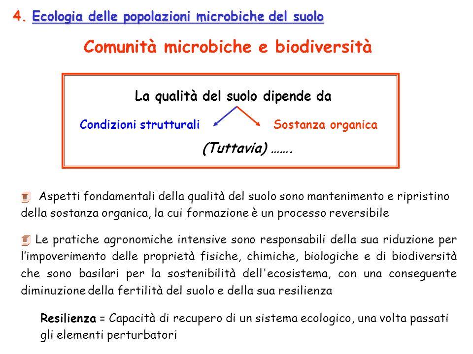 4. Ecologia delle popolazioni microbiche del suolo Le pratiche agronomiche intensive sono responsabili della sua riduzione per limpoverimento delle pr