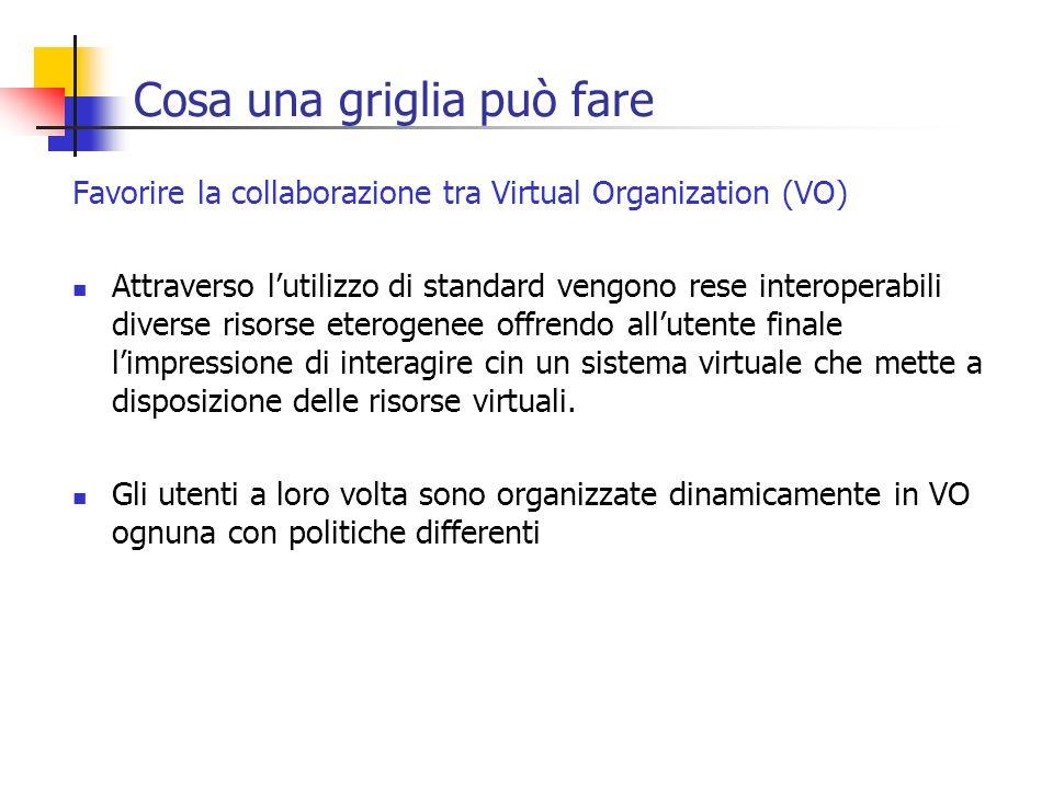 Cosa una griglia può fare Favorire la collaborazione tra Virtual Organization (VO) Attraverso lutilizzo di standard vengono rese interoperabili divers