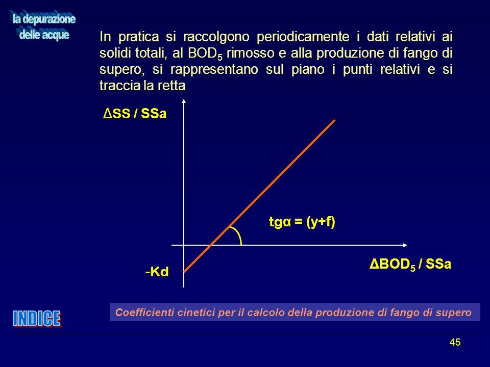 45 In pratica si raccolgono periodicamente i dati relativi ai solidi totali, al BOD 5 rimosso e alla produzione di fango di supero, si rappresentano s