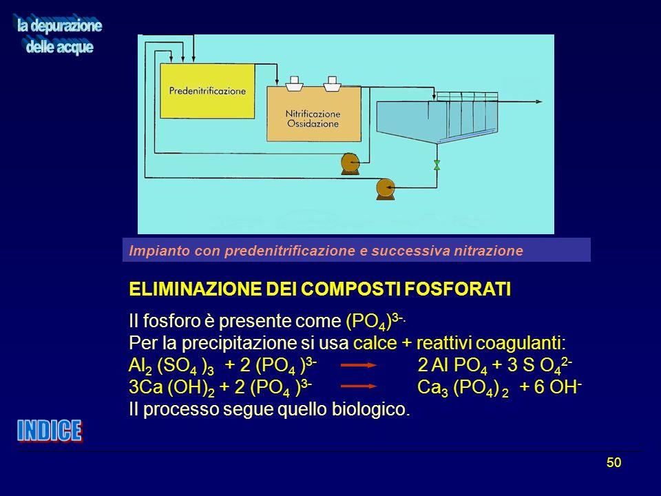 50 ELIMINAZIONE DEI COMPOSTI FOSFORATI Il fosforo è presente come (PO 4 ) 3-. Per la precipitazione si usa calce + reattivi coagulanti: Al 2 (SO 4 ) 3