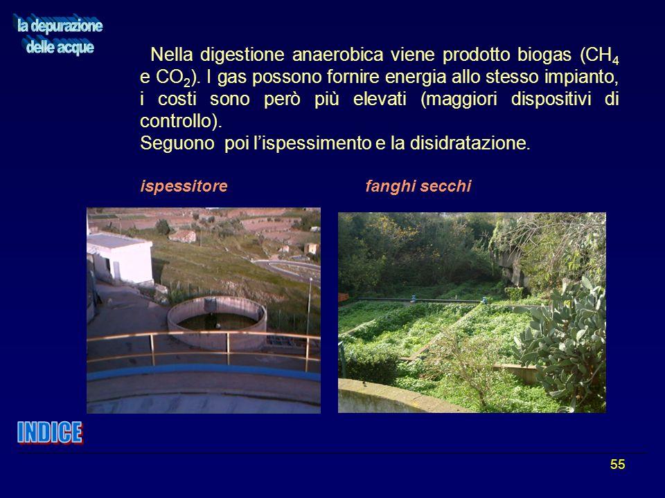 55 Nella digestione anaerobica viene prodotto biogas (CH 4 e CO 2 ). I gas possono fornire energia allo stesso impianto, i costi sono però più elevati