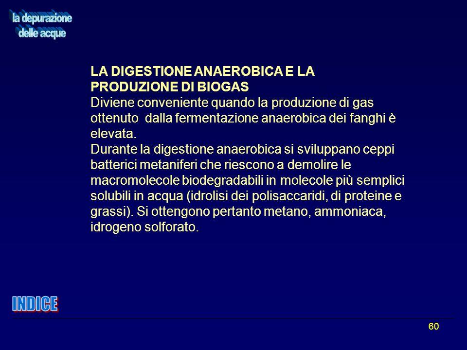 60 LA DIGESTIONE ANAEROBICA E LA PRODUZIONE DI BIOGAS Diviene conveniente quando la produzione di gas ottenuto dalla fermentazione anaerobica dei fang