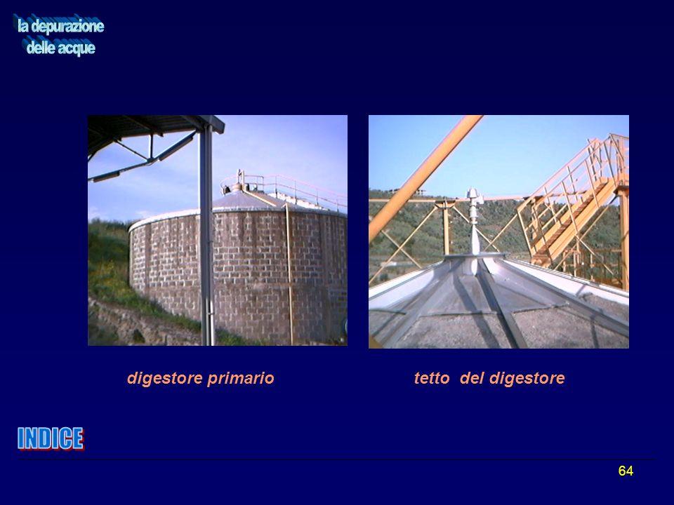64 digestore primario tetto del digestore