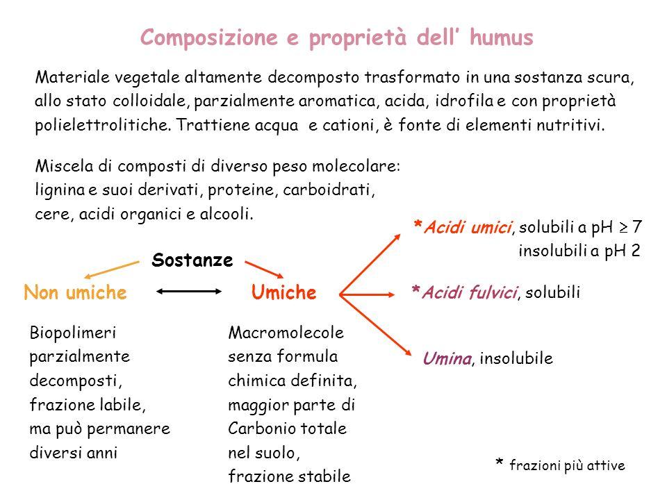Composizione e proprietà dell humus Miscela di composti di diverso peso molecolare: lignina e suoi derivati, proteine, carboidrati, cere, acidi organi