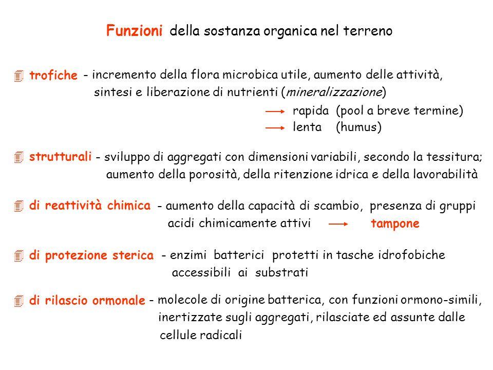 Funzioni della sostanza organica nel terreno 4 strutturali 4 di protezione sterica 4 di reattività chimica 4 di rilascio ormonale 4 trofiche - increme