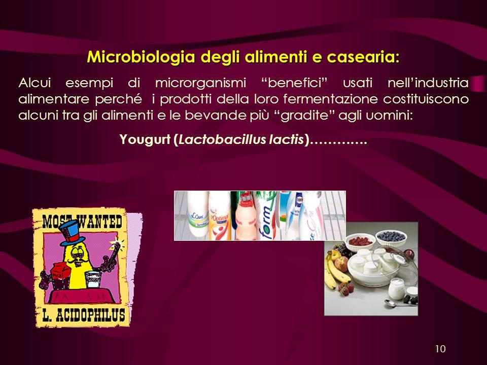 Microbiologia degli alimenti e casearia: Alcui esempi di microrganismi benefici usati nellindustria alimentare perché i prodotti della loro fermentazi