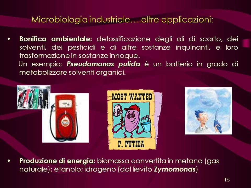 Microbiologia industriale….altre applicazioni: Bonifica ambientale: Bonifica ambientale: detossificazione degli oli di scarto, dei solventi, dei pesti