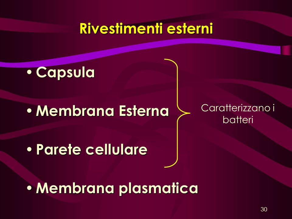 Rivestimenti esterni Capsula Capsula Membrana Esterna Membrana Esterna Parete cellulare Parete cellulare Membrana plasmatica Membrana plasmatica Carat