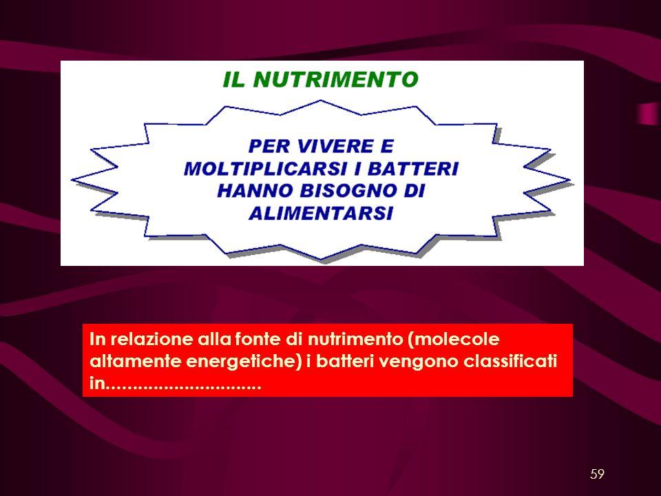 In relazione alla fonte di nutrimento (molecole altamente energetiche) i batteri vengono classificati in.............................. 59
