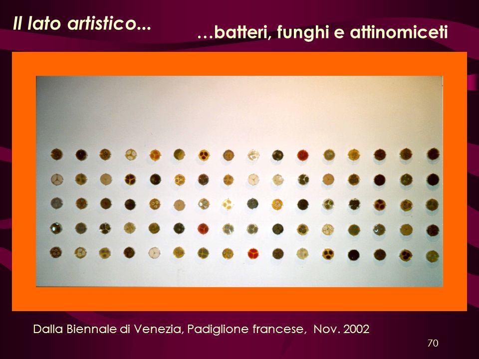 Il lato artistico... Dalla Biennale di Venezia, Padiglione francese, Nov. 2002 …batteri, funghi e attinomiceti 70