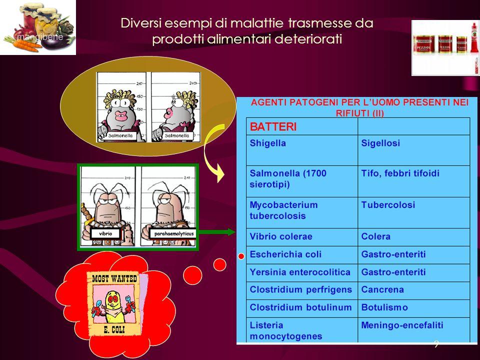 Diversi esempi di malattie trasmesse da prodotti alimentari deteriorati 9