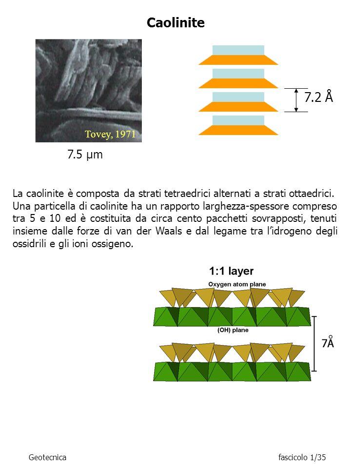 7.5 μm Tovey, 1971 Caolinite 7.2 Å La caolinite è composta da strati tetraedrici alternati a strati ottaedrici. Una particella di caolinite ha un rapp