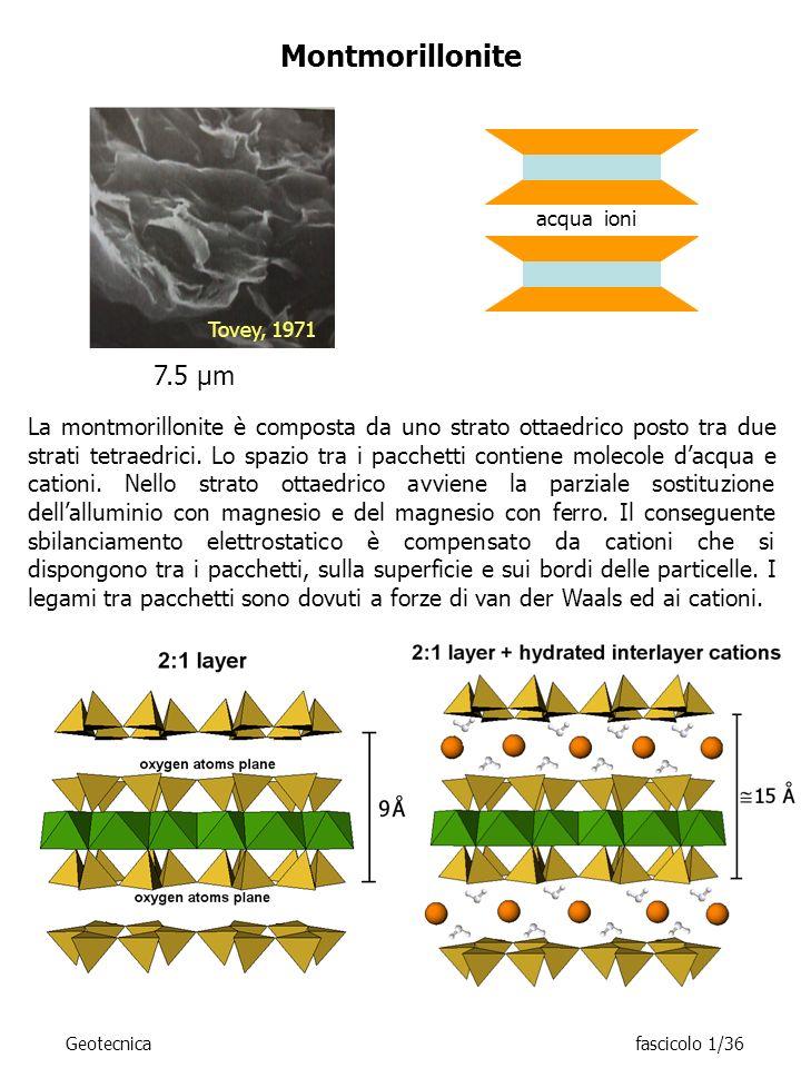 Tovey, 1971 Montmorillonite acqua ioni La montmorillonite è composta da uno strato ottaedrico posto tra due strati tetraedrici. Lo spazio tra i pacche