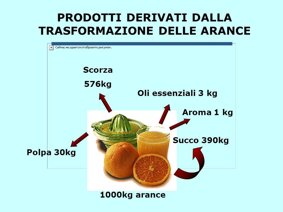 PRODOTTI DERIVATI DALLA TRASFORMAZIONE DELLE ARANCE Succo 390kg Oli essenziali 3 kg Aroma 1 kg Polpa 30kg Scorza 576kg 1000kg arance