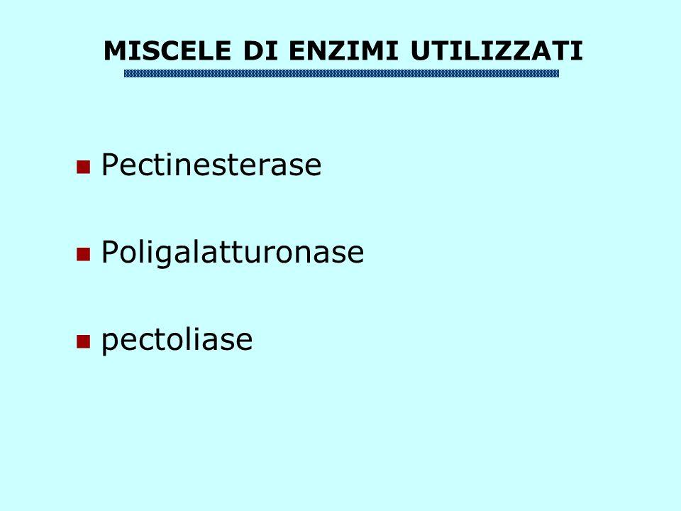 Pectinesterase Poligalatturonase pectoliase MISCELE DI ENZIMI UTILIZZATI