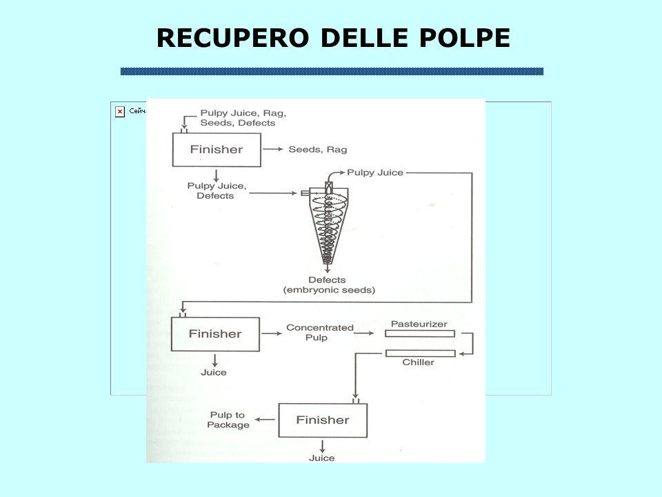 RECUPERO DELLE POLPE