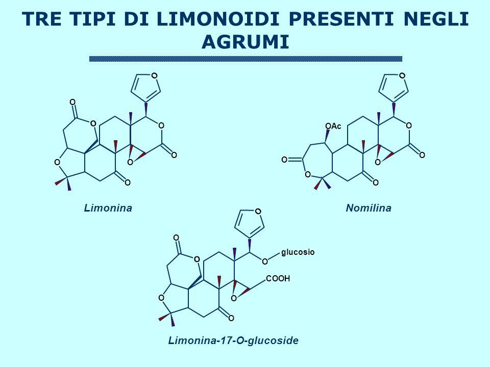 TRE TIPI DI LIMONOIDI PRESENTI NEGLI AGRUMI O O O O O O O O OAc O O O O O O O O O O O O O COOH O glucosio LimoninaNomilina Limonina-17-O-glucoside
