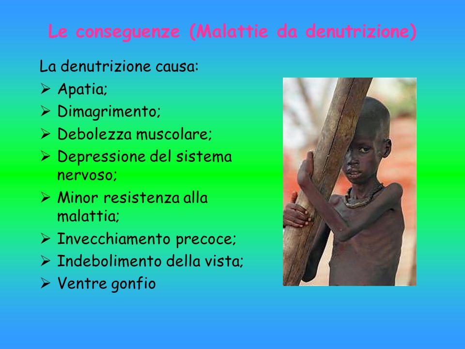 Le conseguenze (Malattie da denutrizione) La denutrizione causa: Apatia; Dimagrimento; Debolezza muscolare; Depressione del sistema nervoso; Minor res