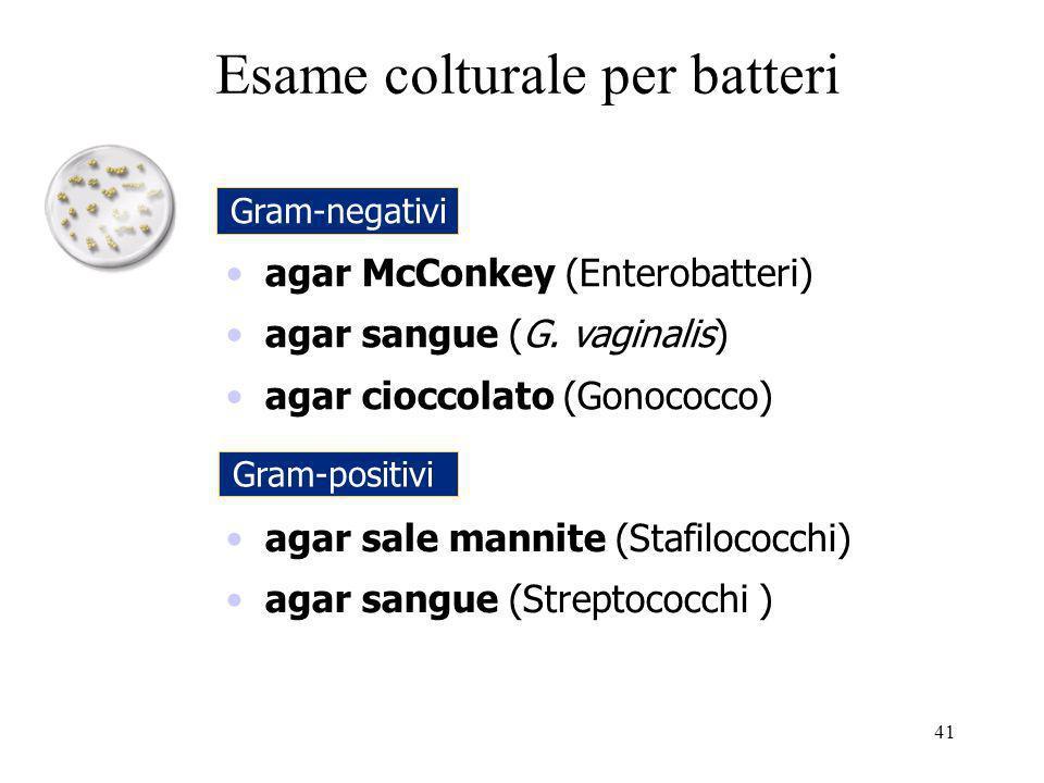 agar McConkey (Enterobatteri) agar sangue (G. vaginalis) agar cioccolato (Gonococco) agar sale mannite (Stafilococchi) agar sangue (Streptococchi ) Es