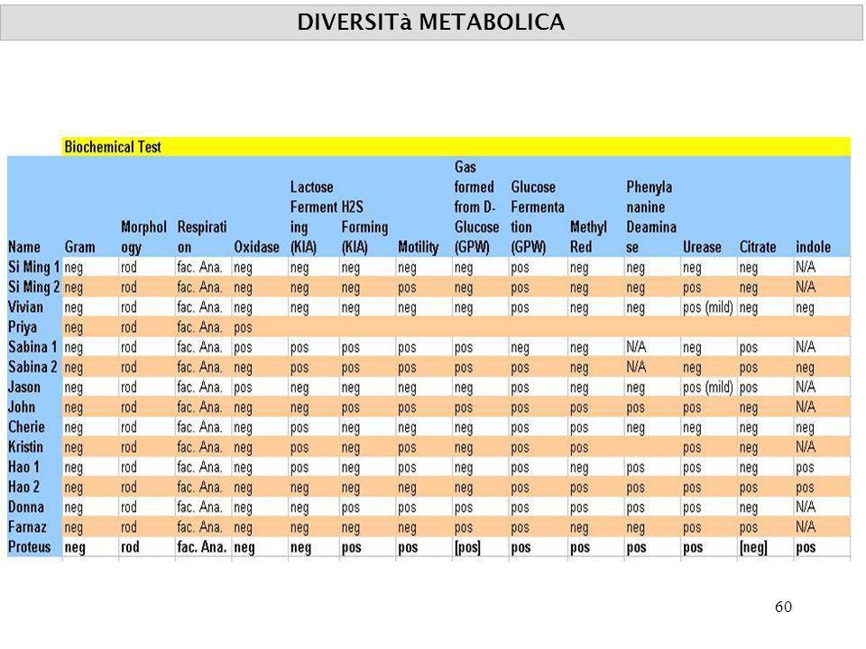 DIVERSITà METABOLICA 60