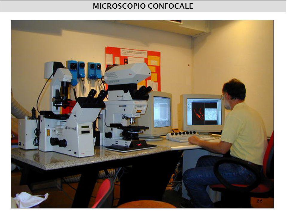 MICROSCOPIO CONFOCALE 86