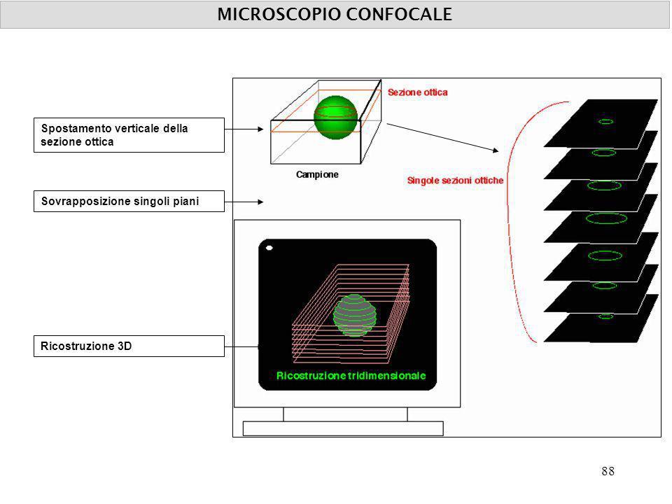MICROSCOPIO CONFOCALE Spostamento verticale della sezione ottica Sovrapposizione singoli pianiRicostruzione 3D 88