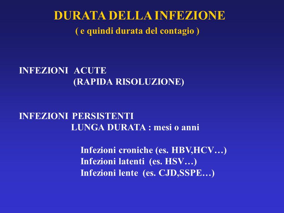 DURATA DELLA INFEZIONE INFEZIONI ACUTE (RAPIDA RISOLUZIONE) INFEZIONI PERSISTENTI LUNGA DURATA : mesi o anni Infezioni croniche (es. HBV,HCV…) Infezio