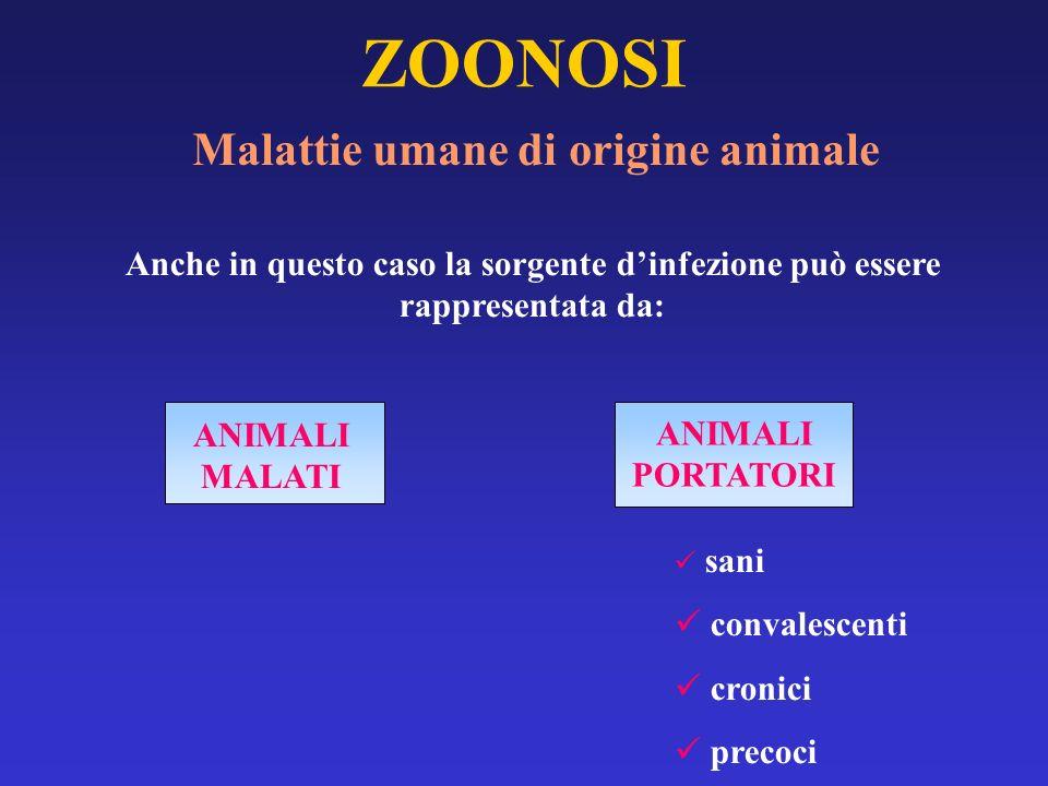 ZOONOSI Malattie umane di origine animale Anche in questo caso la sorgente dinfezione può essere rappresentata da: ANIMALI MALATI ANIMALI PORTATORI sa
