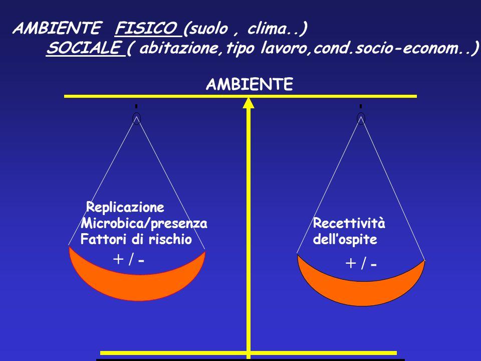 Replicazione Microbica/presenza Fattori di rischio Recettività dellospite AMBIENTE FISICO (suolo, clima..) SOCIALE ( abitazione,tipo lavoro,cond.socio
