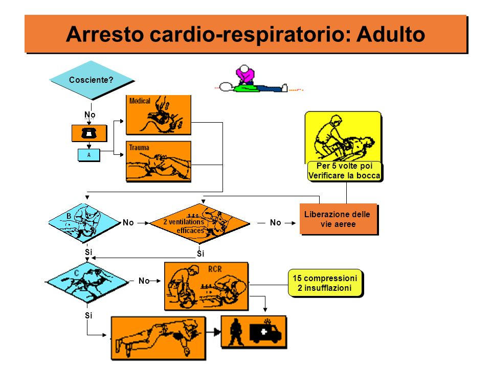 Arresto cardio-respiratorio: Adulto Cosciente? No Liberazione delle vie aeree Liberazione delle vie aeree No Per 5 volte poi Verificare la bocca Per 5