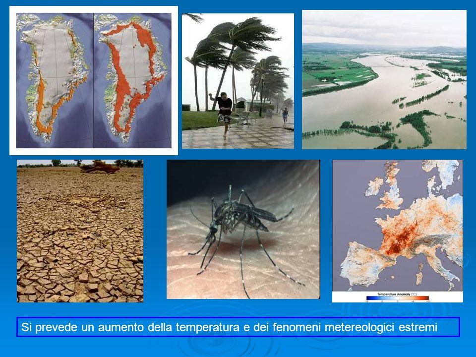 Si prevede un aumento della temperatura e dei fenomeni metereologici estremi