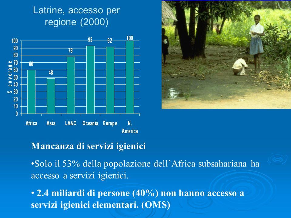 Mancanza di servizi igienici Solo il 53% della popolazione dellAfrica subsahariana ha accesso a servizi igienici. 2.4 miliardi di persone (40%) non ha
