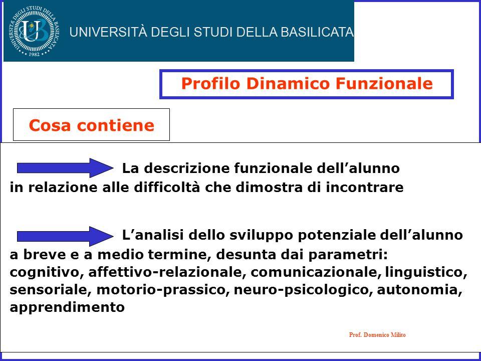 Profilo Dinamico Funzionale Cosa contiene La descrizione funzionale dellalunno in relazione alle difficoltà che dimostra di incontrare Lanalisi dello