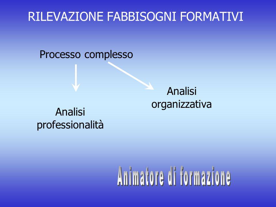 RILEVAZIONE FABBISOGNI FORMATIVI Processo complesso Analisi organizzativa Analisi professionalità