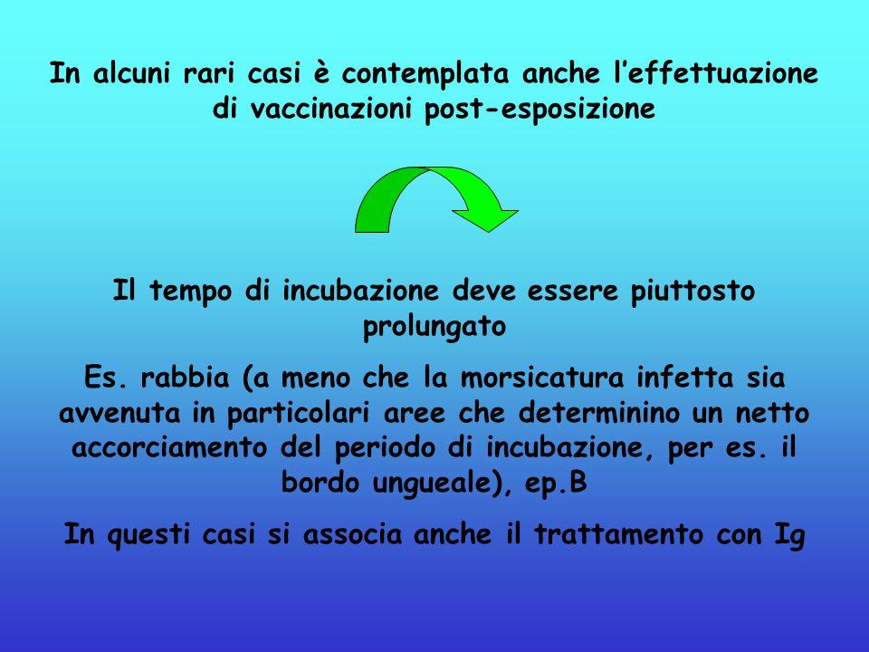 In alcuni rari casi è contemplata anche leffettuazione di vaccinazioni post-esposizione Il tempo di incubazione deve essere piuttosto prolungato Es. r
