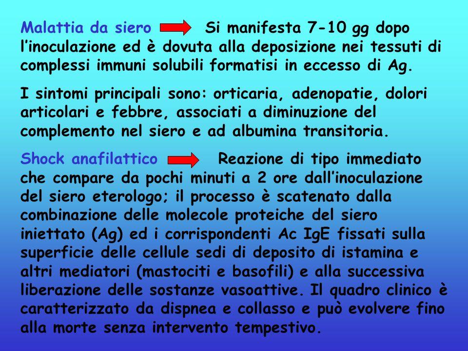Malattia da siero Si manifesta 7-10 gg dopo linoculazione ed è dovuta alla deposizione nei tessuti di complessi immuni solubili formatisi in eccesso d