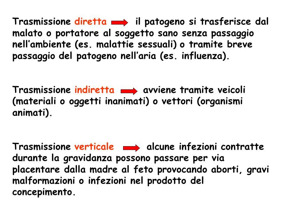 Trasmissione diretta il patogeno si trasferisce dal malato o portatore al soggetto sano senza passaggio nellambiente (es. malattie sessuali) o tramite