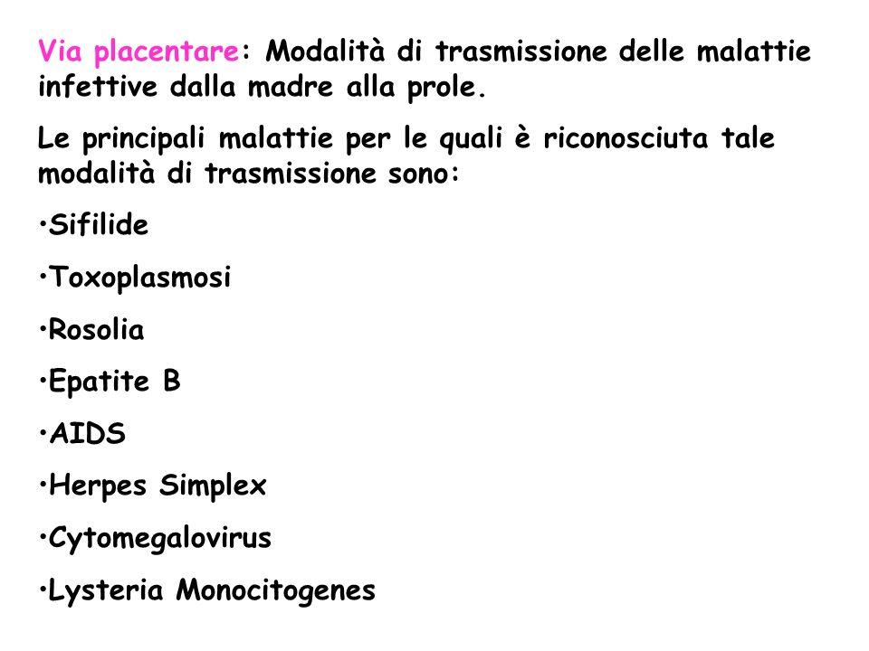 Via placentare: Modalità di trasmissione delle malattie infettive dalla madre alla prole. Le principali malattie per le quali è riconosciuta tale moda