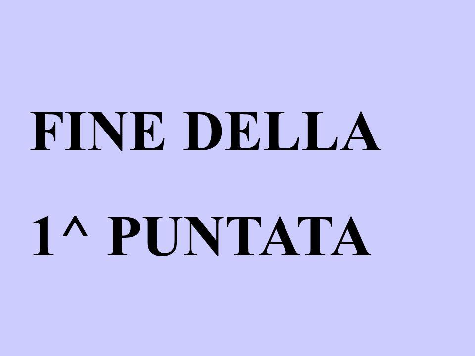 FINE DELLA 1^ PUNTATA