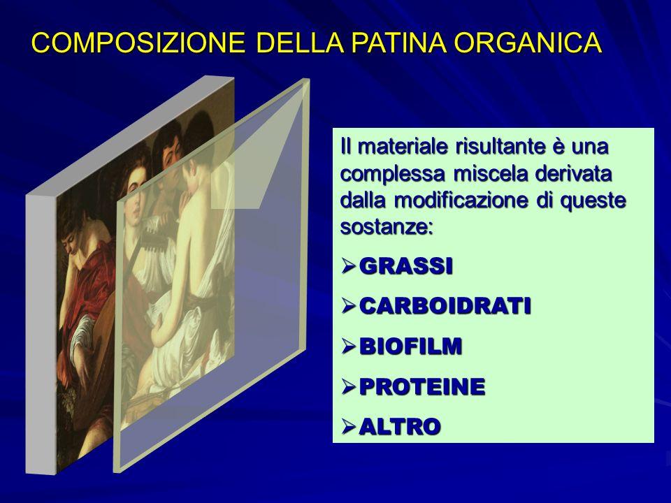 COMPOSIZIONE DELLA PATINA ORGANICA Il materiale risultante è una complessa miscela derivata dalla modificazione di queste sostanze: GRASSI GRASSI CARB