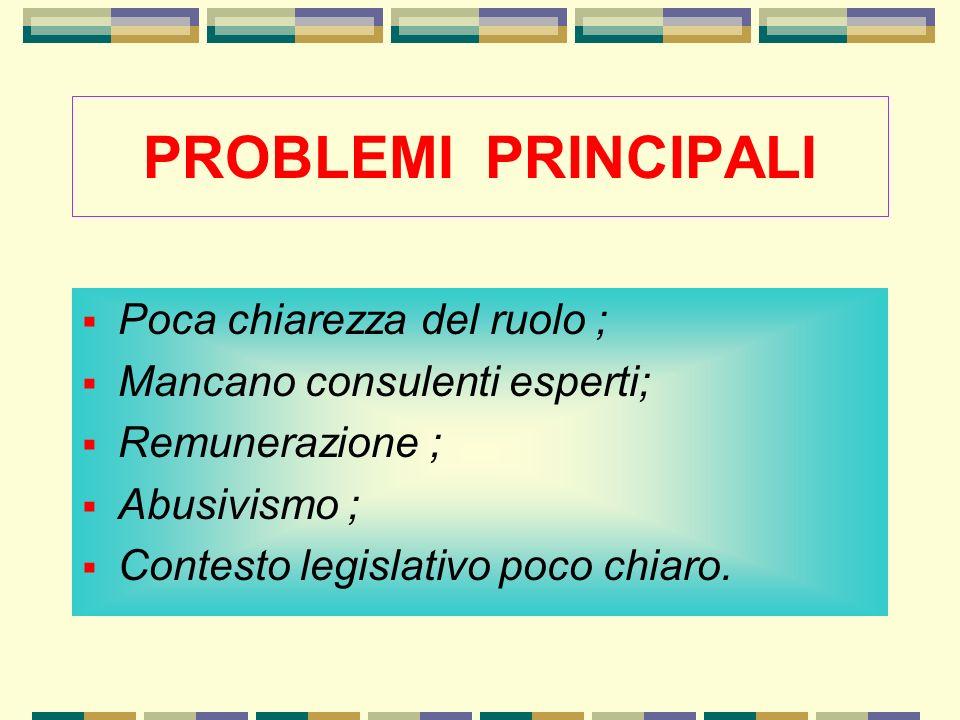 PROBLEMI PRINCIPALI Poca chiarezza del ruolo ; Mancano consulenti esperti; Remunerazione ; Abusivismo ; Contesto legislativo poco chiaro.