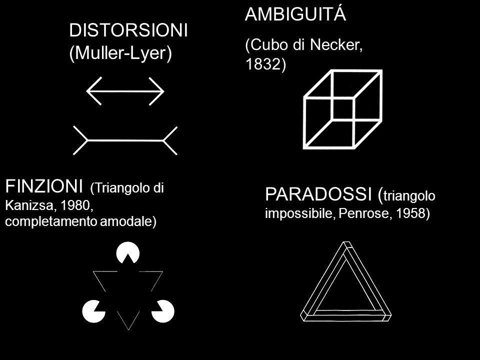DISTORSIONI (Muller-Lyer) AMBIGUITÁ (Cubo di Necker, 1832) PARADOSSI ( triangolo impossibile, Penrose, 1958) FINZIONI (Triangolo di Kanizsa, 1980, com