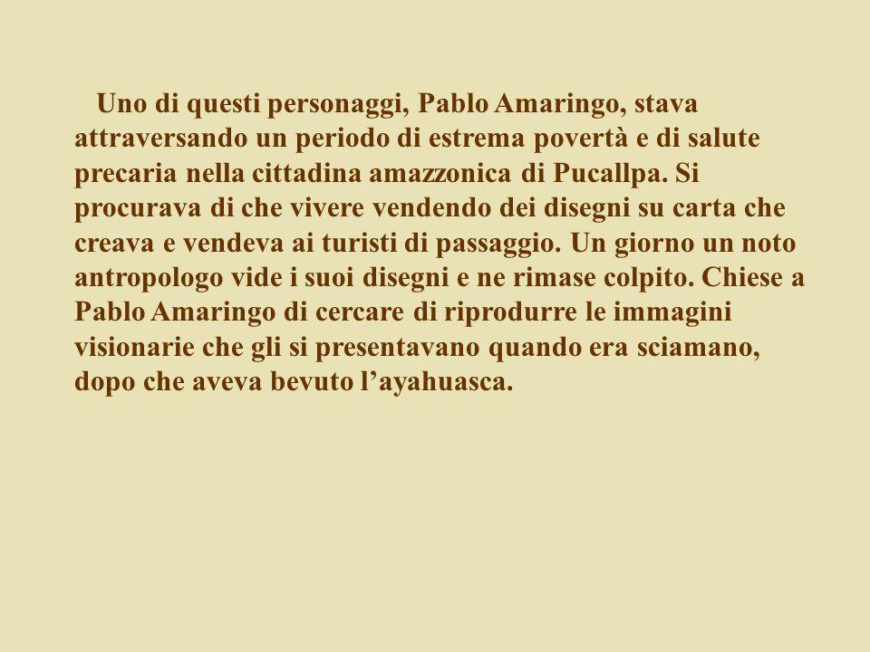 Uno di questi personaggi, Pablo Amaringo, stava attraversando un periodo di estrema povertà e di salute precaria nella cittadina amazzonica di Pucallp