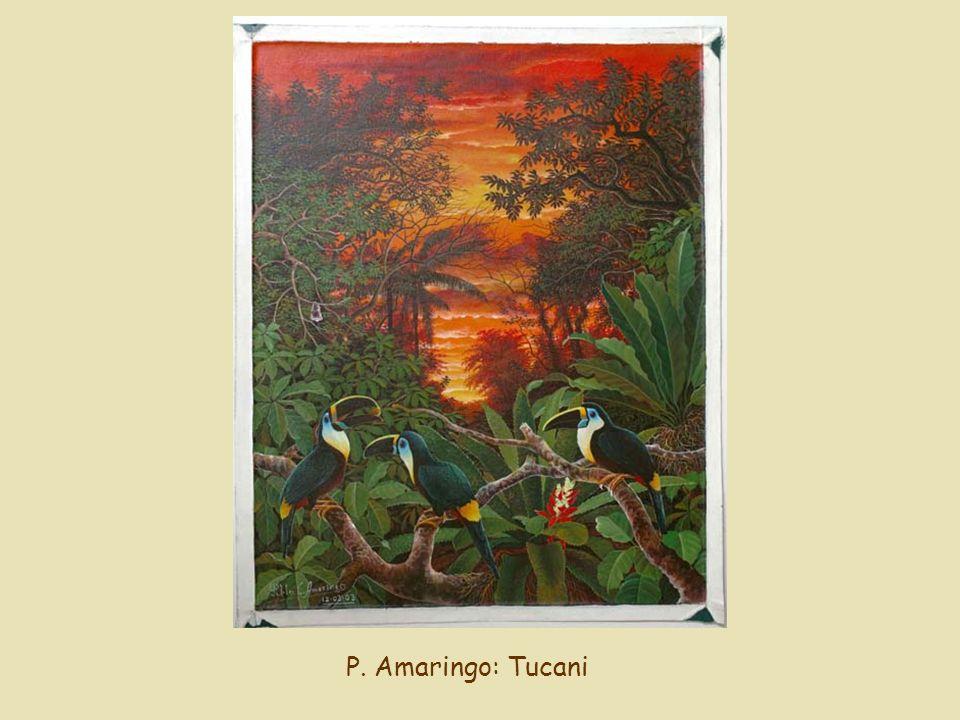 P. Amaringo: Tucani