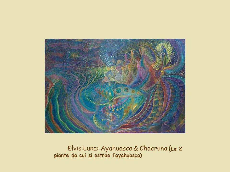 Elvis Luna: Ayahuasca & Chacruna ( Le 2 piante da cui si estrae layahuasca)