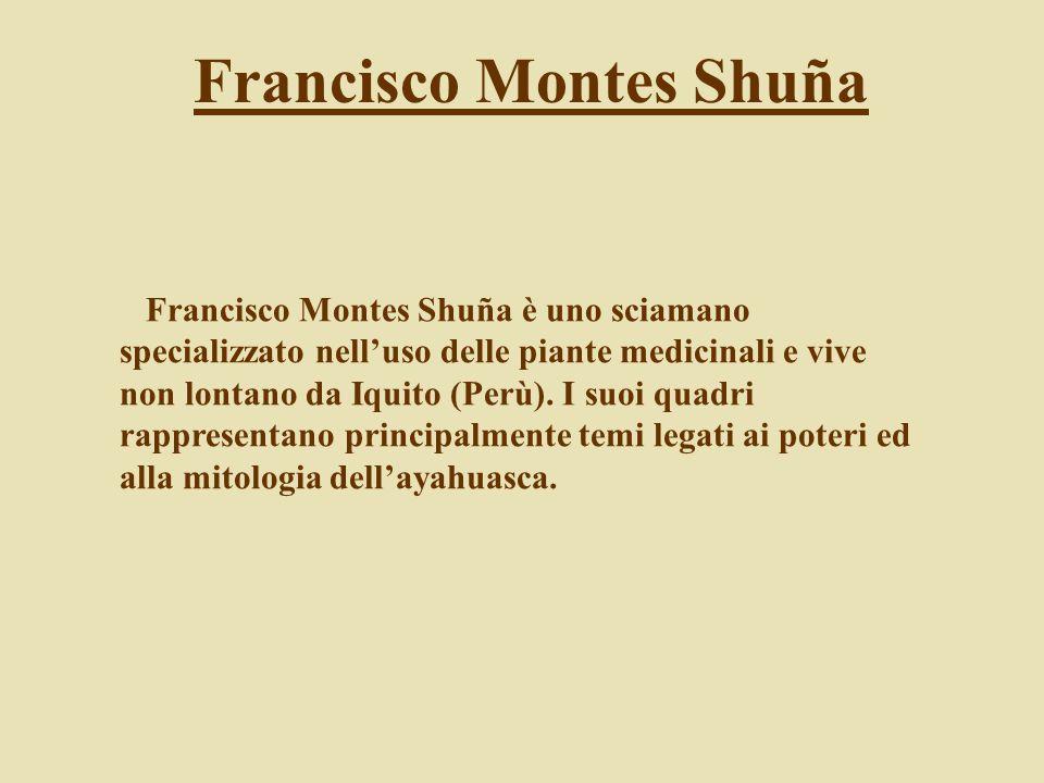 Francisco Montes Shuña è uno sciamano specializzato nelluso delle piante medicinali e vive non lontano da Iquito (Perù). I suoi quadri rappresentano p