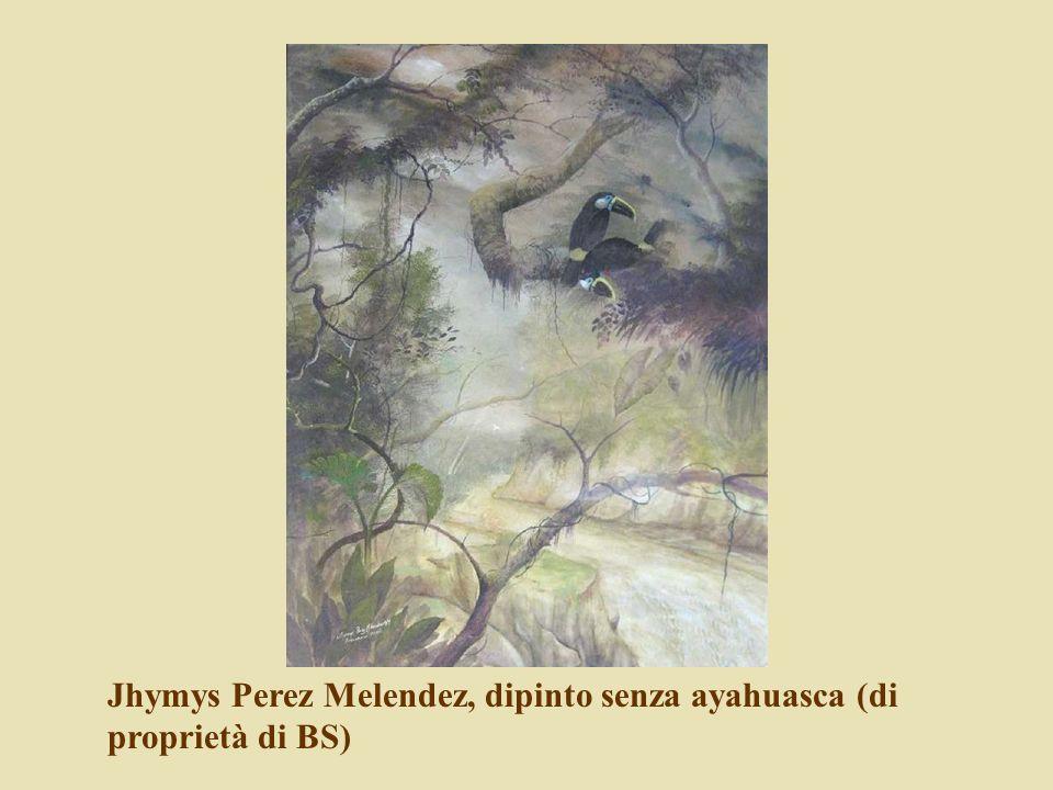 Jhymys Perez Melendez, dipinto senza ayahuasca (di proprietà di BS)