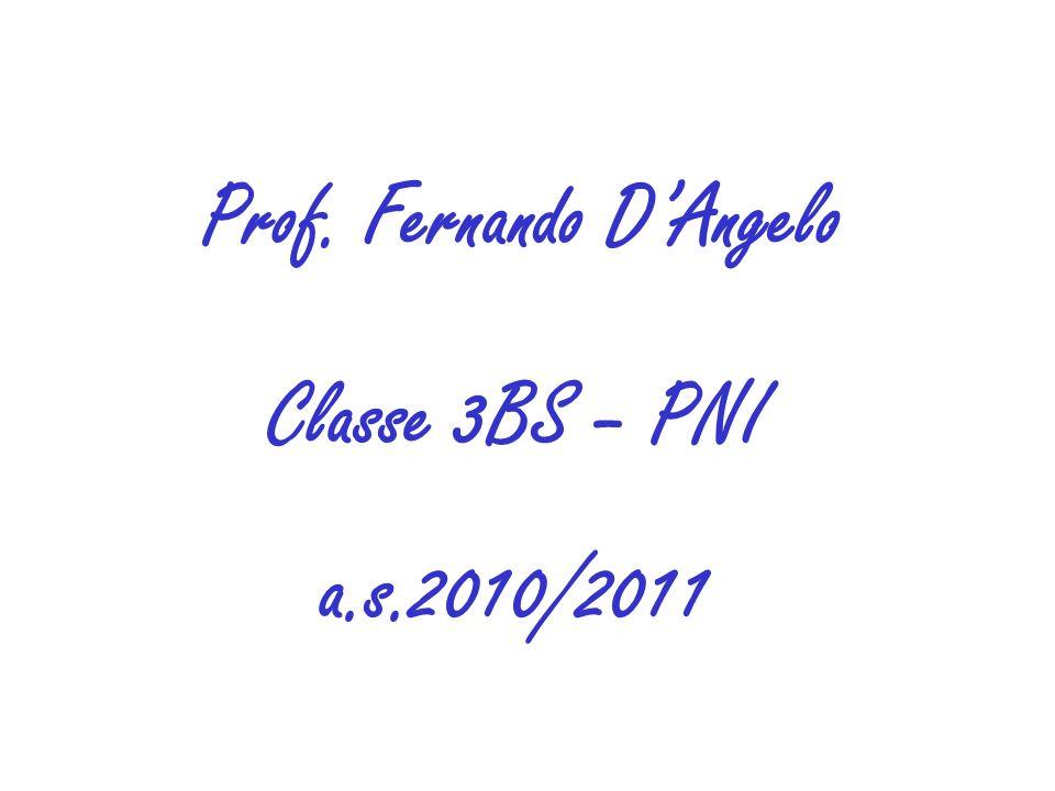 Prof. Fernando DAngelo Classe 3BS – PNI a.s.2010/2011