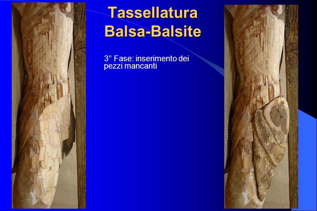 Tassellatura Balsa-Balsite 3° Fase: inserimento dei pezzi mancanti