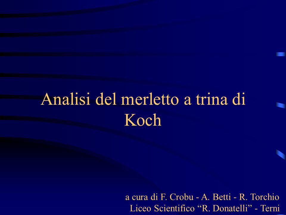 Analisi del merletto a trina di Koch a cura di F. Crobu - A.